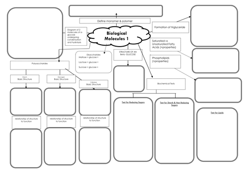 New AQA Biology AS (7401)  A-level (7402) Biological Molecules 1 Mind Map