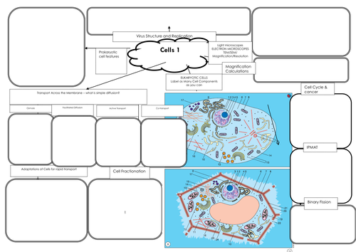 New AQA Biology AS (7401) A-level (7402) Cells, Cell Transport & Cell Division Mind Map