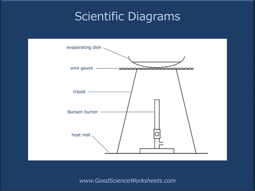 Scientific    Diagrams     Presentation  by GoodScienceWorksheets  Teaching Resources  Tes