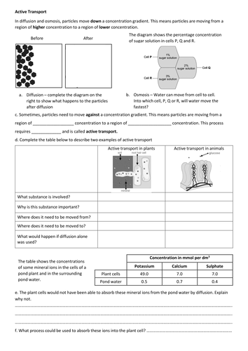 Active Transport Worksheet By Gideonlyons Teaching Resources Tes