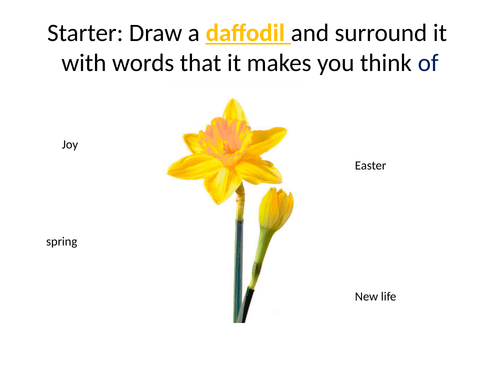 Daffodils KS3 Poetry Lesson
