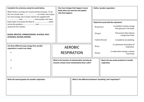 Aerobic Respiration Worksheet By Takht005 Teaching Resources Tes