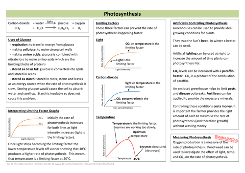 Photosynthesis Revision Sheet (new AQA)