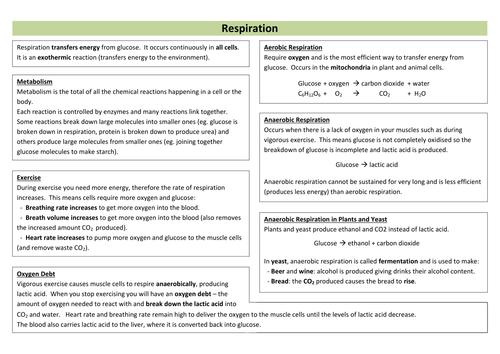 Respiration Revision Sheet (new AQA)