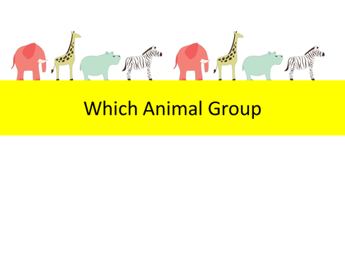Which Animal Group Quiz