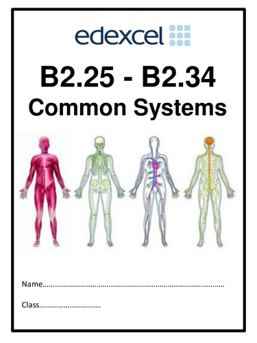 Edexcel B2 Topic 3 Common Systems work booklet 36 pages