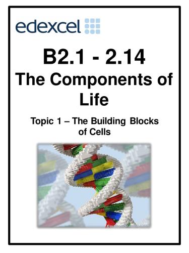 Edexcel B2 Topic 1/2/3 work booklets