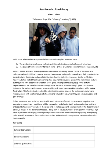 A2 Sociology: Subcultural theories of crime and deviance