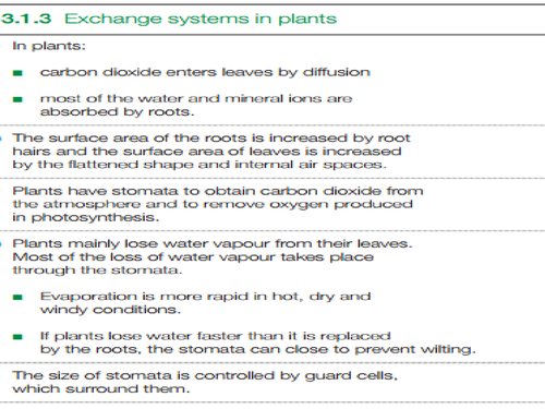 B3.1.3 gas exchange in plants old spec AQA