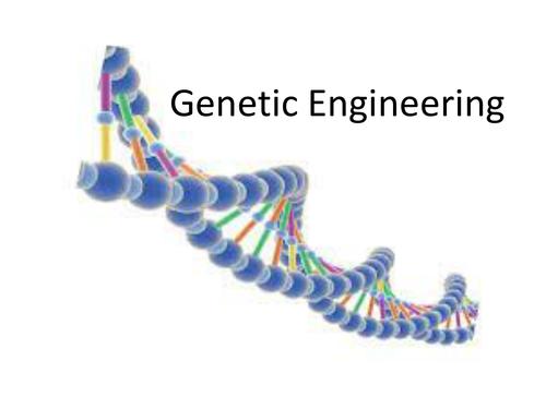 Genetic engineering  2017