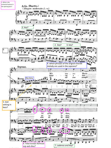 Analysis Questions - Worksheet for Bach Cantata BWV 80 MVT 2  Edexcel Music AS and A Level