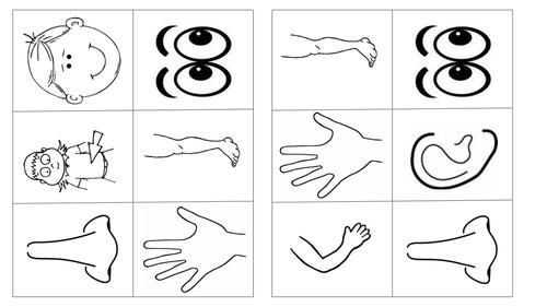 Body Parts Bingo / Bingo El Cuerpo / Bingo Les corps / Bingo rhanau'r corff / EAL Body parts