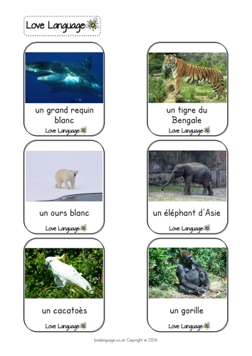 French endangered species vocabulary cards