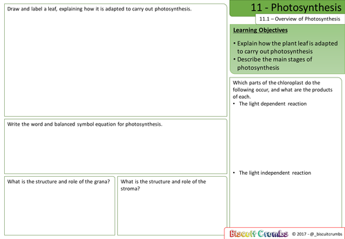 11 - Photosynthesis Revision Sheets - AQA A-Level Biology