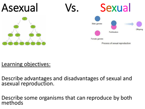 Asexual and sexual species Malaria fungi plants 2018 AQA – Asexual and Sexual Reproduction Worksheet