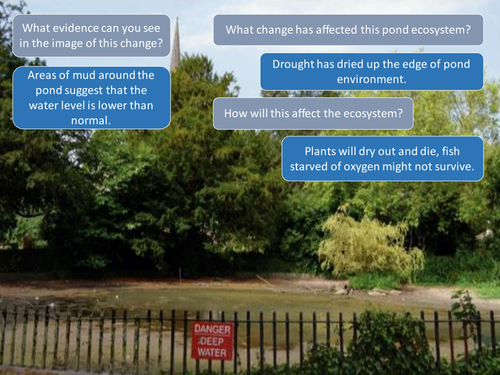 5.2 AQA How does change affect ecosystems