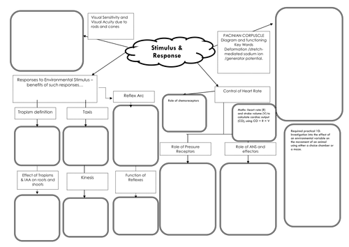 New AQA Biology A-level (7402) Stimulus and Response Revision Mind Map