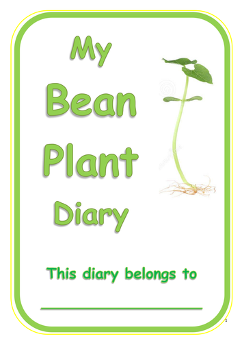 Bean Plant Diary! - Year One