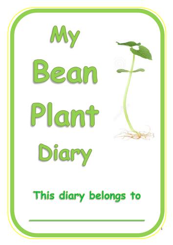 Bean Plant Diary! - Year One