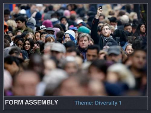 Form assembly Diversity 1