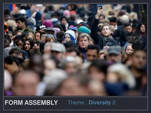 Form assembly Diversity 2