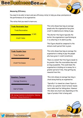 Measuring Efficiency Financial Ratios Worksheet
