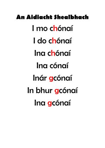 Gaeilge: Gramadach, An Aidiacht Shealbhach