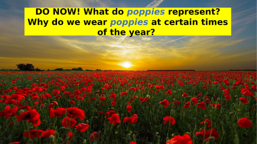 Poppies by Jane Weir (Low Ability) GCSE English