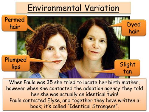 Year 9 Biology - Variation, DNA, Genes, Evolution + Natural selection