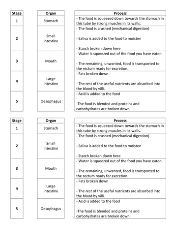 Digestive System- starter/plenary