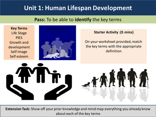 Human Lifespan Development