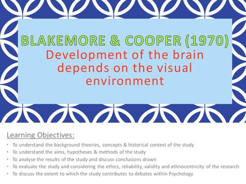 Blakemore & Cooper (1970)