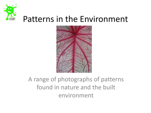 Art. Patterns in the environment slideshow