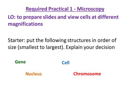New AQA GCSE Microscopy
