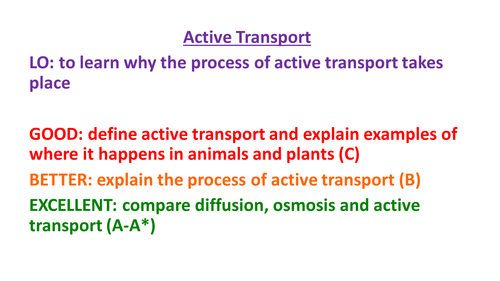 New Aqa Gcse Biology Active Transport By Biologyrk Teaching