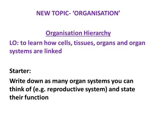 New AQA GCSE Biology Cells, Tissues, Organs, Organ Systems