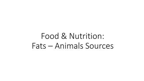 Fats - Animal Sources Activity - Food Preparation & Nutrition