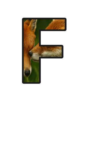 Fox class lettering