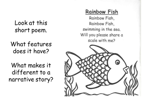 Commotion in the ocean year 1 weekly plan and resources for The fish poem
