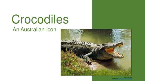 Crocodiles - Reading Comprehension