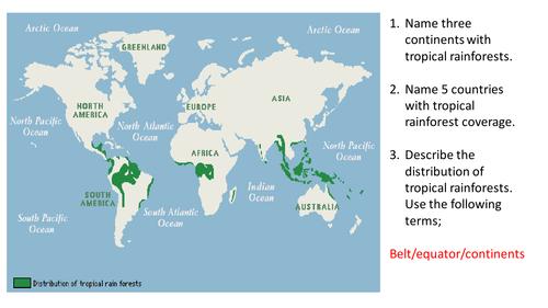Tropical rainforest characteristics