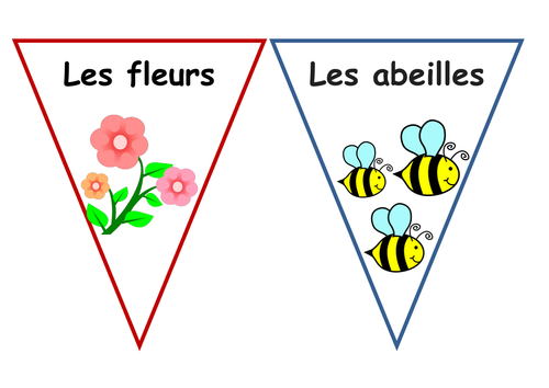 French Garden Flash Cards and Colouring, Early Years, KS1