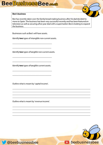 Revenue and Capital Expenditure and Income Worksheet