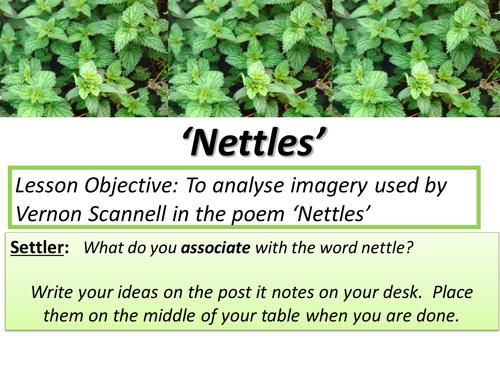 GCSE Unseen Poetry - Nettles
