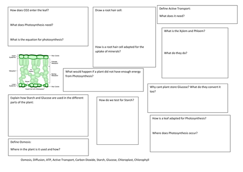 AQA B2 Photosynthesis and Respiration revision map