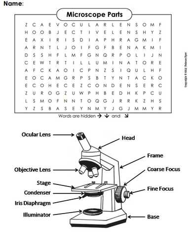 Microscope Parts Word Search