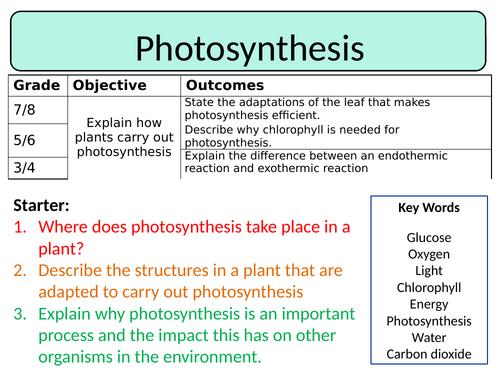 NEW AQA Trilogy GCSE (2016) Biology - Photosynthesis