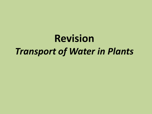 A level biology transport of substances in plants revision powerpoint and exam technique