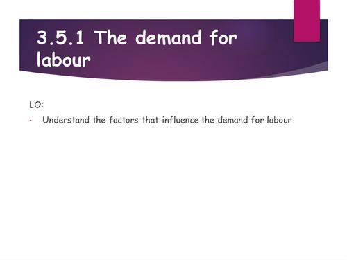 Edexcel Economics Demand for Labour