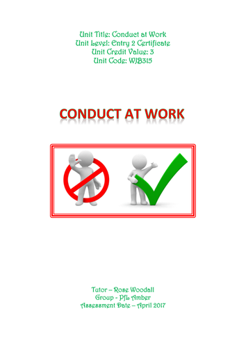 Conduct at work placement/Experience
